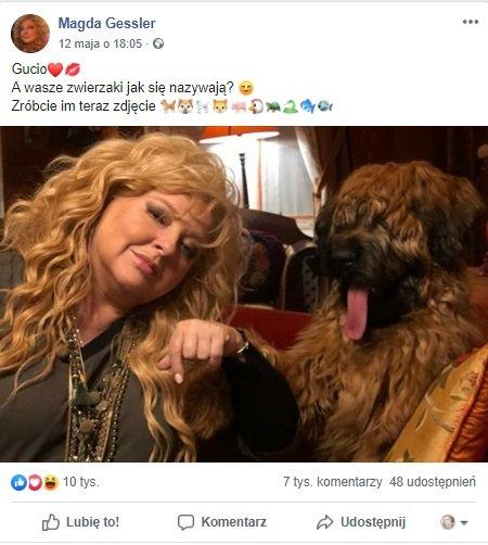 Magda Gessler TVN, Gucio, Facebook