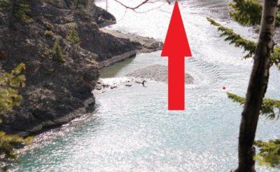Fakt.pl: Potwór z Loch Ness foto, niewyjaśnione zjawiska, Nessie, jezioro Loch Ness. Zrobiono zdjęciem słynnemu potworowi z Loch Ness?