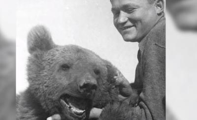 Niedźwiedź Wojtek (Armia generała Andersa) bohaterski w bitwie pod Monte Cassino podaczas II wojny światowej. Zakończył swój żywot w Wielkiej Brytanii.