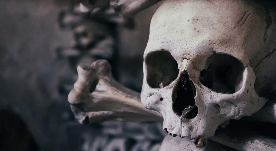 Wąwóz Olduvai - kolebka ludzkości: niesamowite odkrycie w wąwozie Olduvai, w miejscu które uważa się za początki rasy ludzkiej
