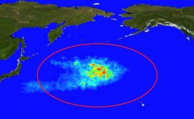 Na oceanie pacyficznym znajduje się największa, pływająca wyspa śmieci na ziemi, jest 6 razy większa od Polski, w oceanach co godzinę ląduje 700 ton śmieci.