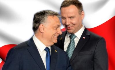 Wybory prezydenckie 2020: Viktor Orban złożył Andrzejowi Dudzie gratulacje z okazji zwycięstwa w niedzielnych wyborach prezydenckich.