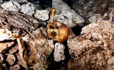 Starożytna piłka Majów to był prawdziwy krwawy sport, mecz toczył się na śmierć i życie, a kończyła go ofiara z ludzi składana bogom.