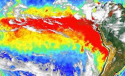 W USA huragan Sally dotarł już do Alabamy. Eksperci sądzą, że po jego przejściu straty mogą sięgnąć 3 miliardów dolarów. Konsekwencje będą straszne.