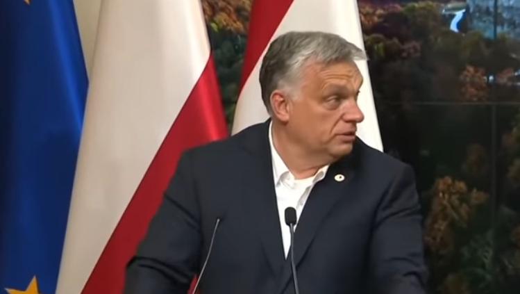 Polska i Węgry to dwa kraje, które od dawna pokazują, że chcą prowadzić politykę całkowicie odmienną niż ta, która jest im narzucana z Brukseli