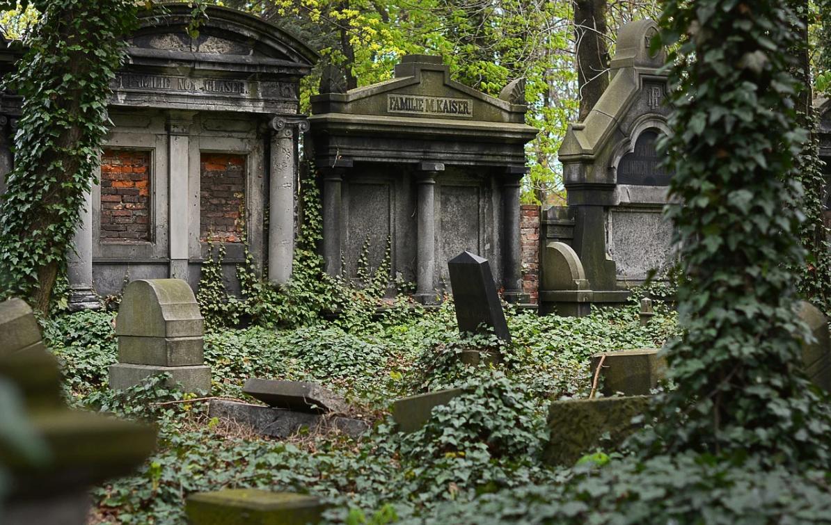 Stowarzyszenie POMOST prowadzi liczne prace archeologiczne, na cmentarzu postanowiono rozkopać jeden z grobów, odkryta została tajemnica.